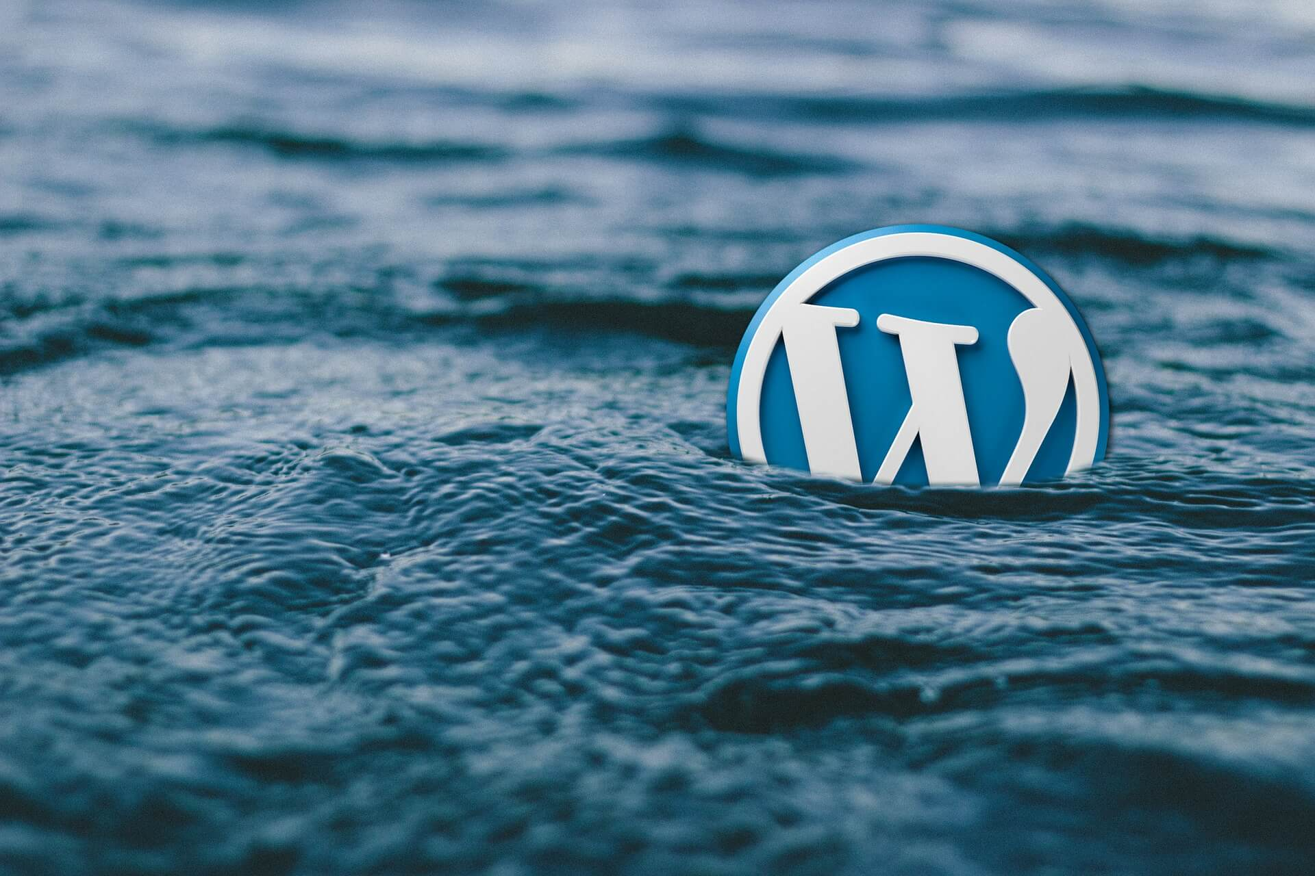 Wordpress logo adrift at sea to represent the need for WordPress help